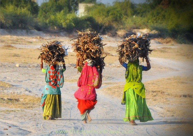 Trio of brightly clad, barefoot rural Indian women carrying bundles of sticks